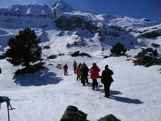 Grupo de 10 usuarios de centros desfilando en la nieve