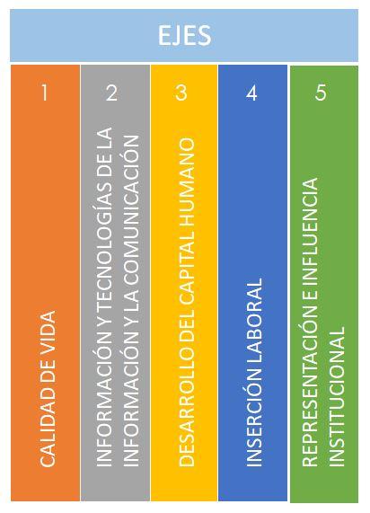 Descripción Ejes Calidad vida-comunicación-capital humano - inserción laboral -representación institucional